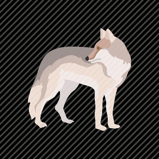 animals, brush wolf, canine, coyote, gray wolf, mammal, wolf icon