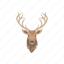 animals, elk, elk head, head, mammal, wapiti, wapiti head icon