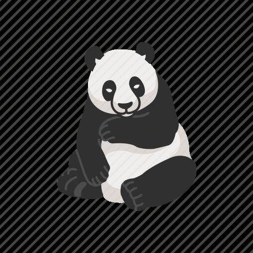 animal, bear, giant panda, mammal, panda icon