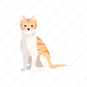 animal, cat, feline, kitten, mammal, pet, savannah cat icon