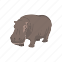 animal, aquatic animal, hippo, hippopotami, hippopotamus, mammal icon