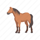 animal, horse, mammal, mare, pet, ponny, stallion icon