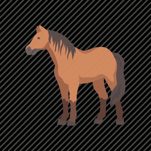animal, horse, mammal, mare, pet, ponny, stallion icon