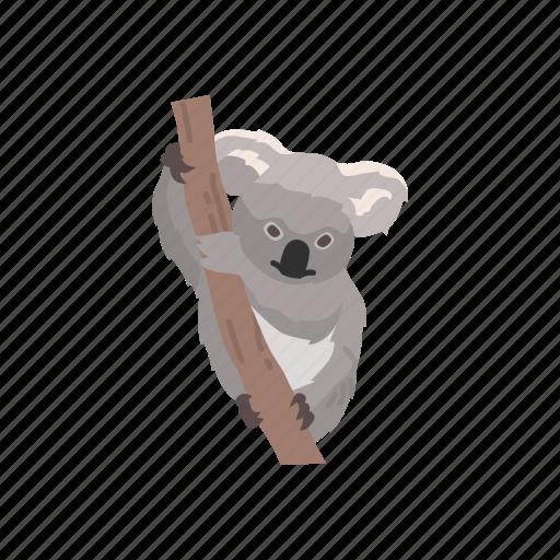 animal, bear, koala, koala bear, mammal, wombat icon