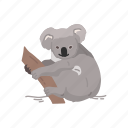 animal, bear, koala, koala bear, mammal, wombat icon