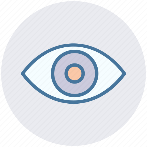 Eye, eyeball, human eye, overview, search, view, vision icon - Download on Iconfinder
