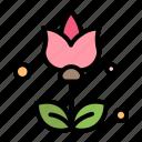 bouquet, flowers, present icon