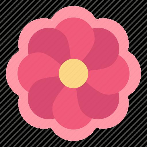Flower, gras, mardi, sunflower icon - Download on Iconfinder
