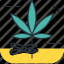 cannabis, harvest, marijuana, weed icon