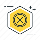 lemon, limonene icon