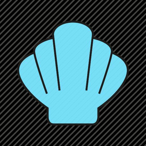 marine, ocean, sea, shell, shellfish icon