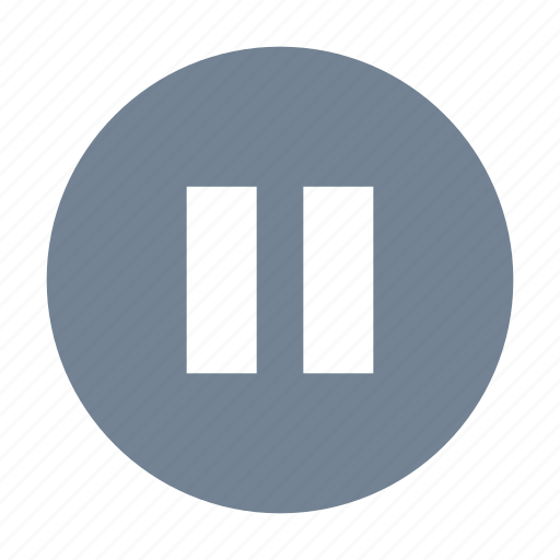 Pause, player, round icon - Download on Iconfinder