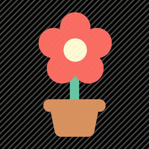 flower, pot, present icon
