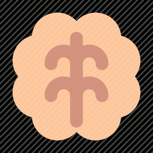 brain, mind icon