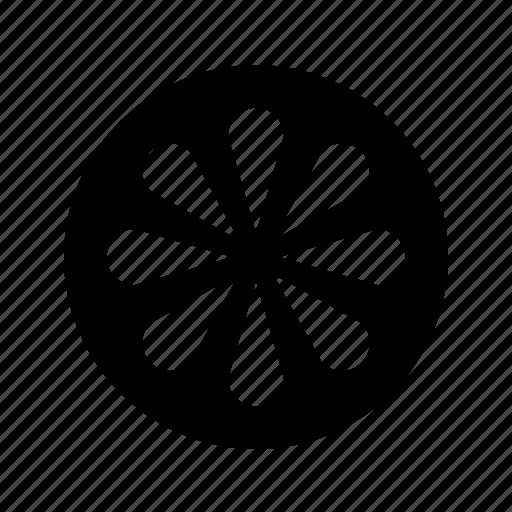 citrus, slice icon