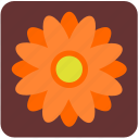 bud, camomile, chamomile, daisy, flower, nature, rose icon