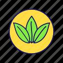 eco, ecological, environment, natural, nature, organic, eco friendly