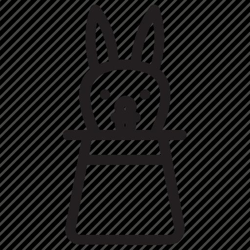 hat tricks, magician rabbit, magician tricks, rabbit from a hat, rabbit in magic icon
