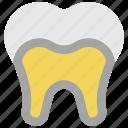 clean, decay, dentist, hygiene, medical, teeth, tooth