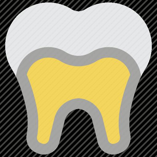 clean, decay, dentist, hygiene, medical, teeth, tooth icon
