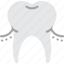 clean, dentist, gums, hygiene, medical, teeth, tooth icon