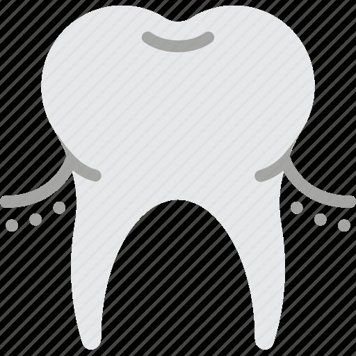 clean, dentist, gums, hygiene, medical, teeth, tooth icon