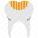 clean, decay, dentist, hygiene, medical, teeth, tooth icon