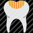 decay, medical, hygiene, tooth, dentist, clean, teeth icon