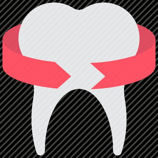 clean, dentist, healthy, hygiene, medical, teeth, tooth icon