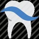 clean, dentist, hygiene, medical, teeth, tooth, toothpaste