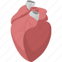 heart, marriage, medical, romantic, valentines, wedding icon