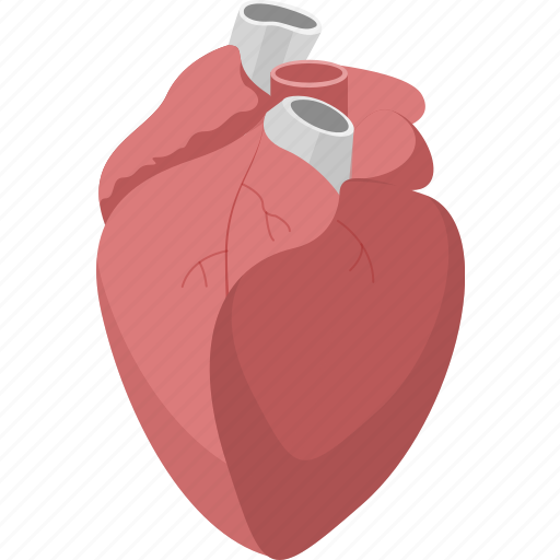 heart, marriage, medical, romantic, valentines, wedding icon