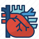 cardio, cardiology, cardiovascular, circulation, heart icon