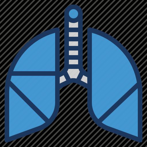 breath, breathe, lung, medical, pulmonology icon