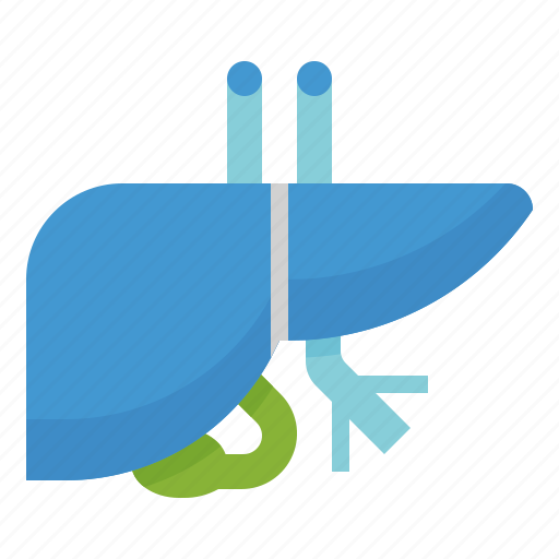 detoxification, health, healthcare, hepatology, liver, medical icon