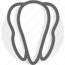 health, healthcare, oral, tooth icon