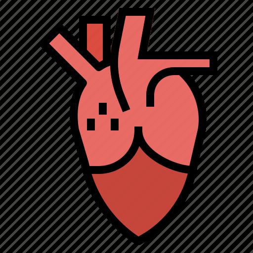 blood, body, doctor, heart, hospital, organ icon