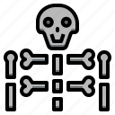 bones, medical, rays, skeleton, skulls, x icon