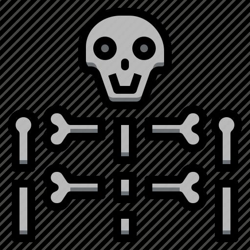 bones, medical, rays, skeleton, skulls, x icon