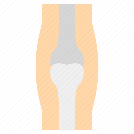 Bone, medical, osteoporosis icon - Download on Iconfinder