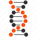 dna, genetic, genetic engineering, genetics, genom, helix, spiral icon