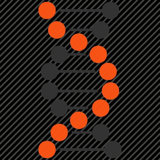 dna, genetic, genetic engineering, genetics, genom, helix, spiral icon