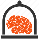 brain, conservation, memory, mind, museum, neuro, preserve icon