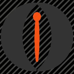 clitoral, clitoris, urethra, urethral, vagina, vagine, veneric icon