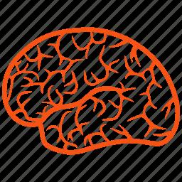 memory, mind, neuro, organ, think, thinking, wit icon