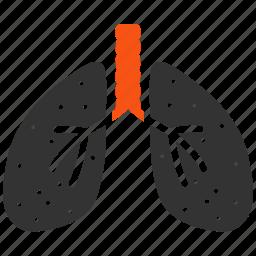 anatomy, body, breath system, lung, lungs, organ, smoking icon