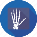 hand x ray, medical, radiology, radioscopy, xray icon