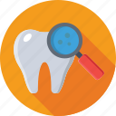 dental checkup, dentistry, magnifier, molar, tooth icon