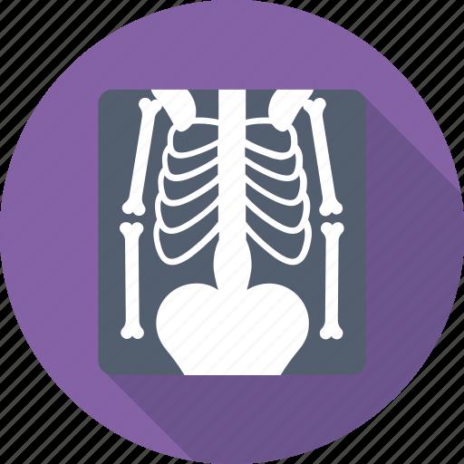 medical, radiology, radioscopy, ribs, xray icon