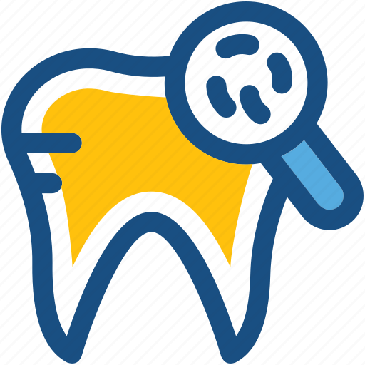 dental checkup, human tooth, magnifier, molar, tooth icon